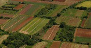 zemljiste-620x3501